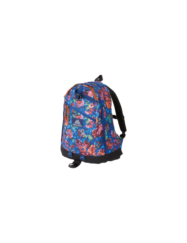 GREGORY 65174-6326 DAY PACK/LUMINOUS TAPESTRY